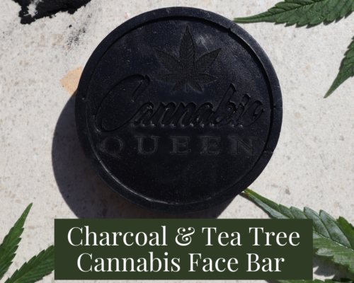 Charcoal & Tea Tree Cannabis Face Bar
